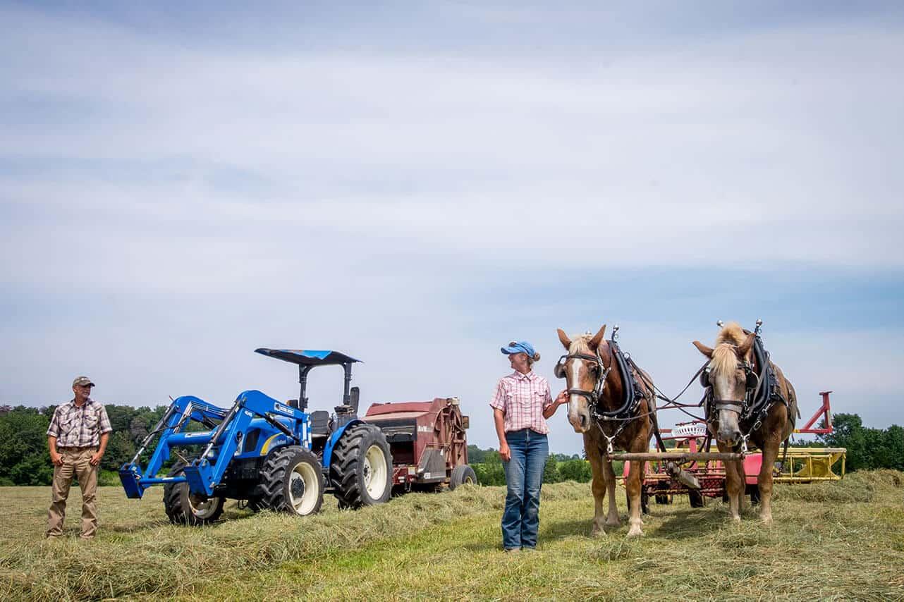 Horses vs tractor