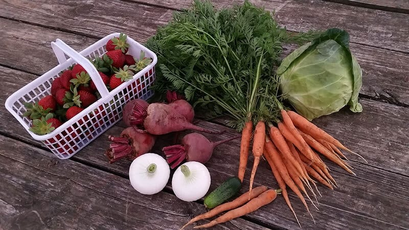White Oak Valley Farm fruit and veggies on a table