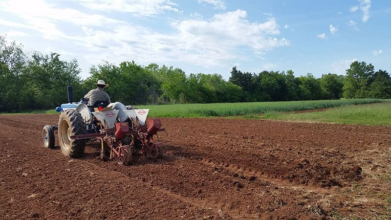 White Oak Valley Farm plowing with a tractor