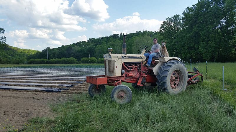 White Oak Valley Farm tractor, owner and dog