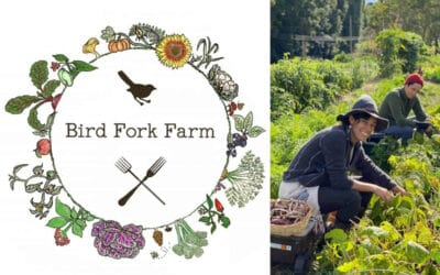 Bird Fork Farm Can Be Your New BFF