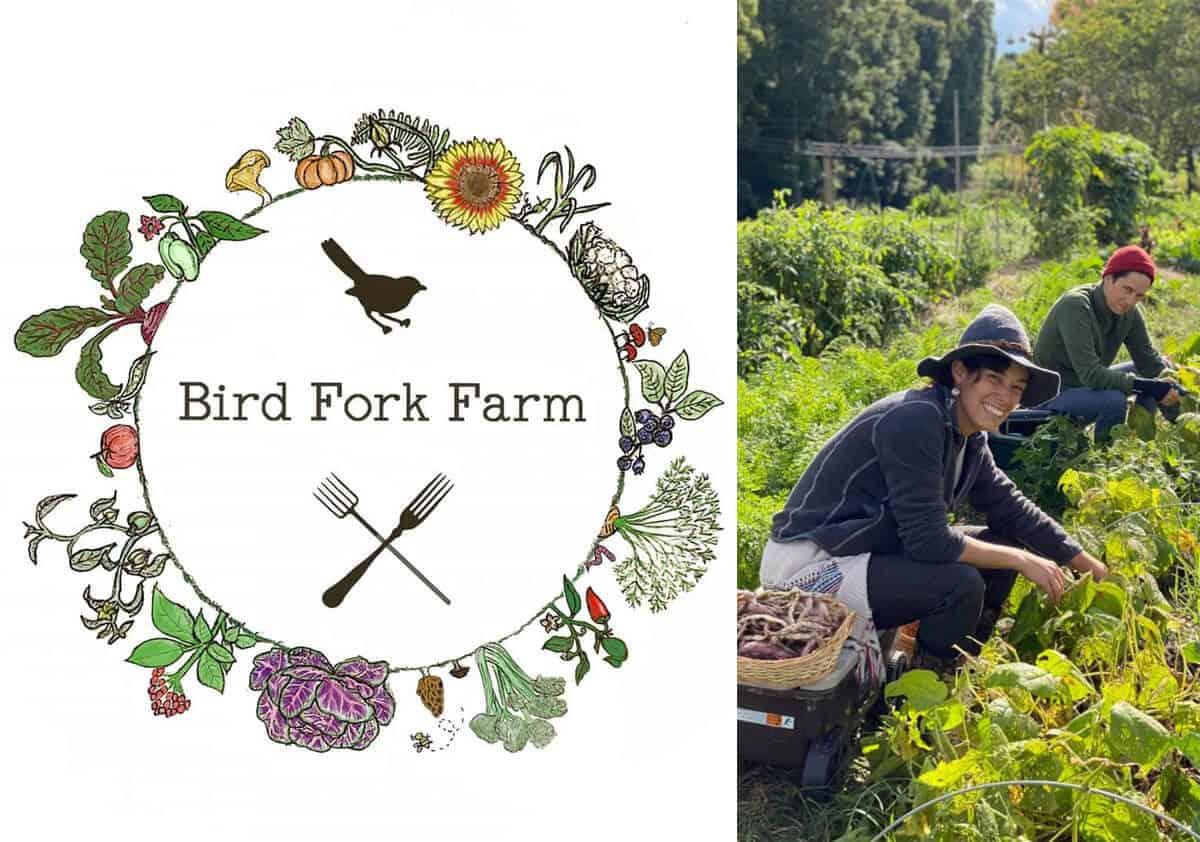 Bird Fork Farm logo and farmers