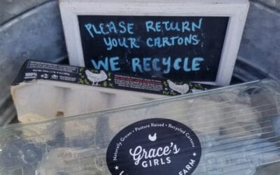 Free Range Recycling Rules!